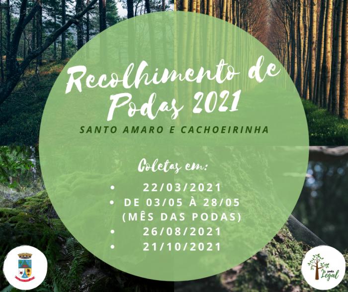 RECOLHIMENTO DE PODAS 2021